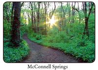 Mcconnell-springs